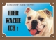 Warnschild Bulldogge