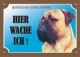 Warnschild Bullmastiff