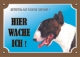 Warnschild Bullterrier