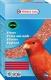 Orlux Eifutter trocken rot, 1000gr. Karton